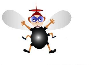 Die Fliege Kasimir   Bild zum Gedicht
