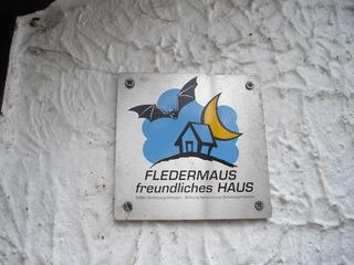 Fledermäusefreundliches Haus - Fledermaus, Fledermausschutz, fledermausfreundliches Haus, Säugetiere, bedrohte Arten, fliegende Säugetiere, Insektenfresser