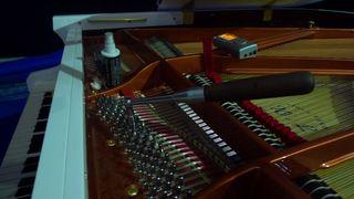 Klavierstimmen  #1 - Klavier, Saiten, Instrument, Musik, Akustik, Ton, Töne, Tastenisntrument
