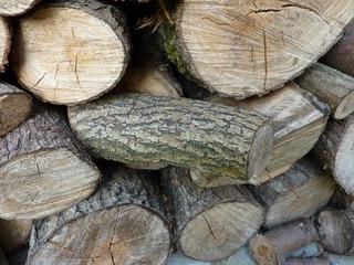 Brennholz - Brennholz, Holz, Feuerholz, Trocknung, Lagerung