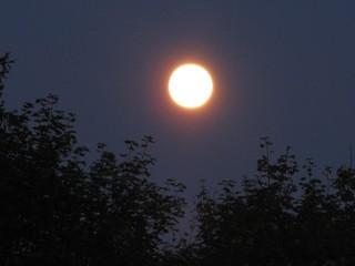 Vollmond - Mond, Vollmond, Nacht, Mondphase