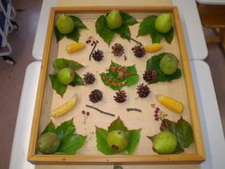Herbstmandala - Mandala, Herbstfrüchte, Natur, Birne, ahorn, Mais, Hagebutten, Zapfen