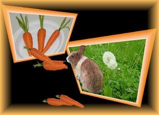 Aus dem Rahmen ... (3) - Kaninchen, Möhre, Effektbild