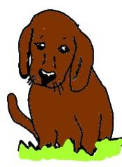 Hund gemalt (bunt) - Hund, Säugetier, Haustier, Anlaut H, Illustration
