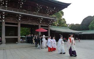 Meiji-Schrein #3 - Meiji, Meiji-jingu, Schrein, Tempel, Shintoismus