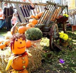 Kürbisdekoration #2 - Kürbis, Ernte, Dekoration, Herbst, Fest