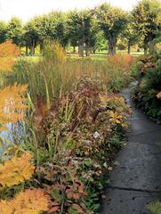 Herbststimmung #4 - Herbst, Herbststimmung, Herbstfarben, Farbe, rot, orange, braun, Natur, Garten, Park, Berggarten