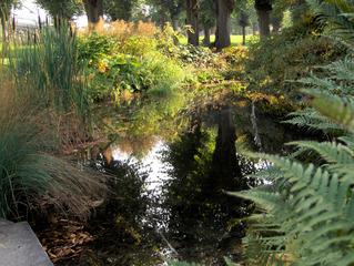 Herbststimmung #5 - Herbst, Herbststimmung, Herbstfarben, Farbe, rot, orange, braun, Natur, Garten, Park, Berggarten, Spiegelung