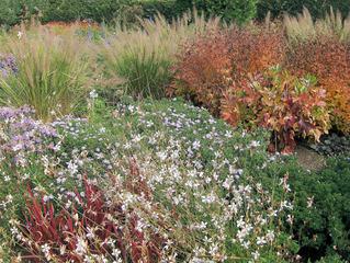 Herbststimmung #9 - Herbst, Herbststimmung, Herbstfarben, Farbe, rot, orange, braun, Natur, Garten, Park, Berggarten