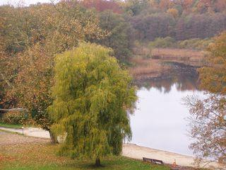 Herbst2 - Herbst, Jahreszeit, Landschaft