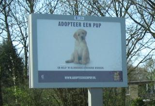 Werbeplakat in Holland - Bildersammlung, Fundgrube, Kurioses, Werbung, Tiere
