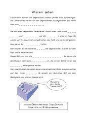 Sehvorgang - Lückentext wie wir sehen