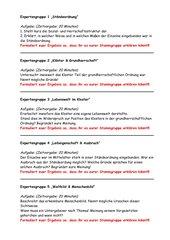 Gruppenpuzzel Grundherrschaft/Mittelalter Kl. 11