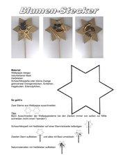 Wellpappe-Sterne mit Naturmaterialien