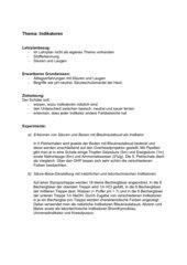 Indikatoren-Unterrichtsentwurf