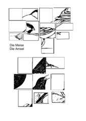 Puzzle Vögel