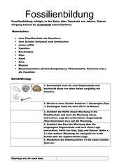 Anleitung zur Fossilienherstellung