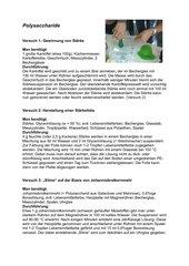 Polysaccharide - Schülerversuche