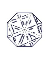 Domino Puzzle Evolution