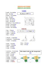 irregular plural forms / irregularities with regular verbs