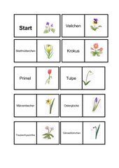 Frühlingsblumendomino