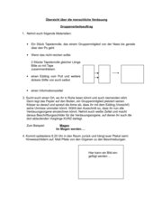 Verdauungsorgane: Einstieg in Klasse  9