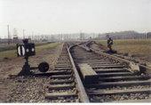 Erinnerungen an Auschwitz