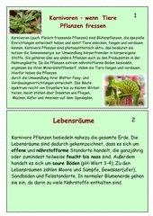 Lernkartei Fleischfressende Pflanzen