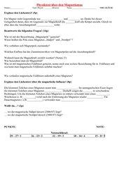 Physiktest über den Magnetismus