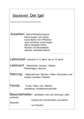 Igel Steckbrief - Unterrichtsreihe Herbst, 3. Klasse