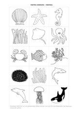 Submarine Creatures 15 Bildchen (Zuordnungsspiel / Memo-Spiel)*