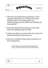 Stationen zur Atmung der Fische; Bau der Kiemen 5./6. KLasse Brandenburg