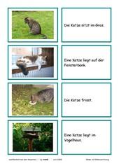 Lesekarten - Katzen (Zuordnung Bild - Satz)