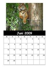 Kalender2008/09 Teil 3