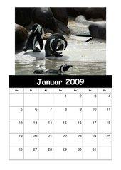 Kalender 2008/09  Teil 2