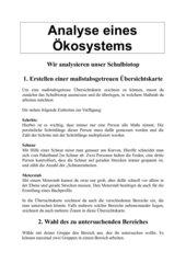 Analyse eines Ökosystems