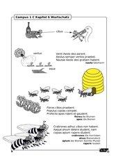 Illustrierte Wortschatzübung zu Campus 1 C Kapitel 6