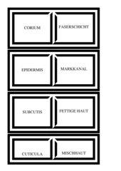 Fachwörter Domino Mitte-Ende 1. Lehrjahr