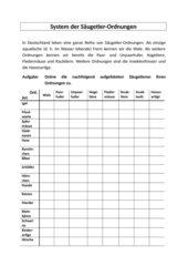 Zuordnungs-AB zu einheimischen Säugetierordnungen