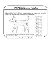 Übungen zum Messen und Zeichnen beliebiger Winkel