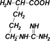Aminosäuren als verkürzte Strukturformeln