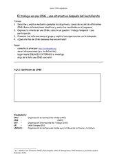 Trabajar en una ONG - Webquest