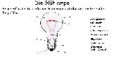 Die Glühlampe