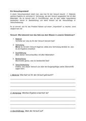 Versuchsprotokoll Sachunterricht 3. Klasse Einführung