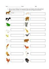 Test-  Welches Tier ist gemeint? (Polnisch)