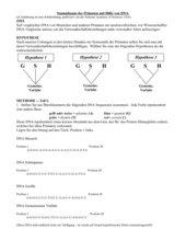 DNA Vergleich Primaten (Schülerübung mit Büroklammern), Word doc
