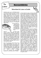 Sea Life Unterrichtsmaterial