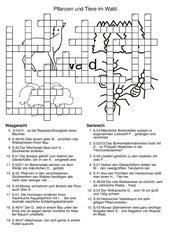Kreuzworträtsel zum Lebensraum Wald