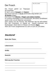 Frosch - Steckbrief