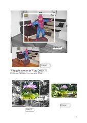 Bildbearbeitung mit Word 2003 u. 2010